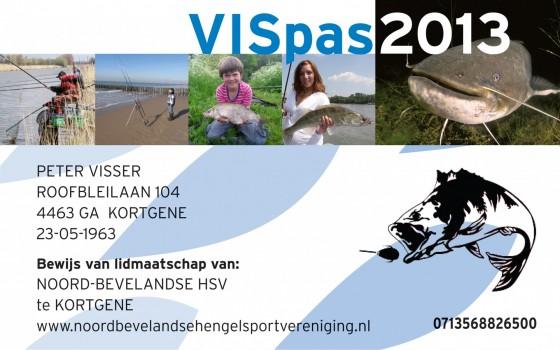 VISpas 2013